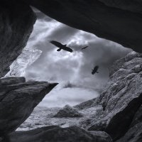 Чёрный ворон, что ж ты вьёшься... :: Станислав Иншаков