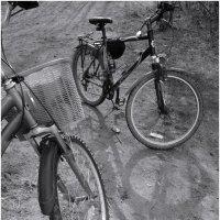 велоходы :: sv.kaschuk