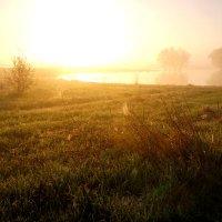 Утро туманное :: Валерий