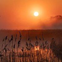 восход солнца :: Viktor Makarov