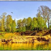 Локация:Где то близ Змеиногорска Алтайский край :: Сергей Капицин