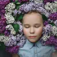lilac :: Яна Спирина