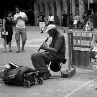Уличный музыкант :: Ольга Мутовина