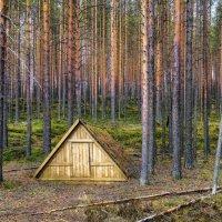 подвал в Карельском лесу :: Георгий А