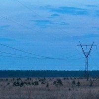 Восточные сети почему восточные? Потому что с востока приходят. :: Михаил Полыгалов