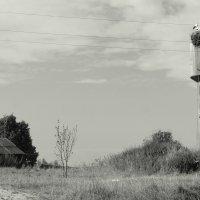 Дом (лето) :: Елена Минина