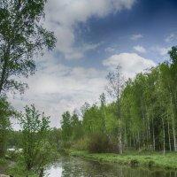 На прогулке :: marmorozov Морозова
