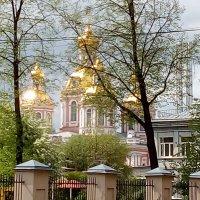 Городской пейзаж. (Санкт-Петербург). :: Светлана Калмыкова