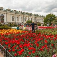 В Александровском саду :: Nyusha