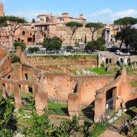 От солнца разомлев, чуть дремлет Римский Форум - седой, как лунь, старик, уставший от забот :: Гала