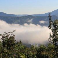 Клубится в долине туман :: Сергей Чиняев