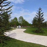 Парк Галицкого - современный и относительно новый парк в Краснодаре :: Татьяна Смоляниченко