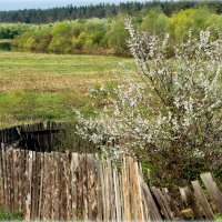 За околицей..река течёт.. :: Александр Шимохин