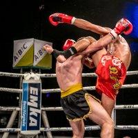 Kickboxing 2 :: Konstantin Rohn