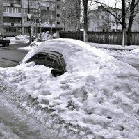 Кто не спрятался - я не виноват! :: Кулага Андрей Андреевич