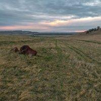 Восход в долине Онло... :: Сергей Герасимов