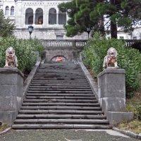 Еще одни терракотовые львы, отнюдь не дружелюбные, на южной террасе Юсуповского дворца. :: ИРЭН@ .