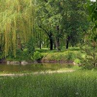 Лето гуляет по парку. :: barsuk lesnoi