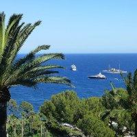 Море, пальмы, корабли :: Лидия Бусурина