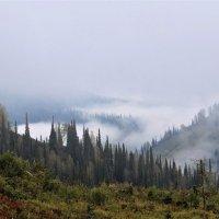 Туман в горах :: Сергей Чиняев