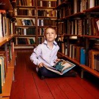 библиотекарь :: Irina Novikova