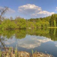 Весенний пейзаж в зеркале пруда :: Константин