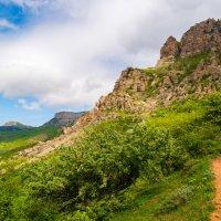 южный склон Демерджи :: Андрей Козлов