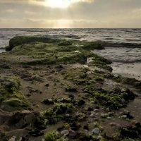 картинки с моря :: Осень