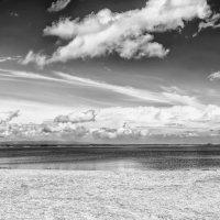 Пустынный пляж :: Dmitry Ozersky