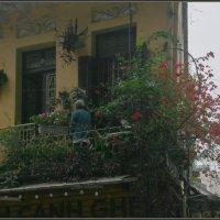 Балкон :: Алексей Хвастунов