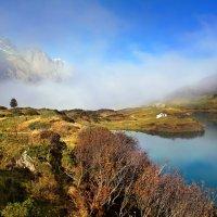 туман похож на обман... :: Elena Wymann