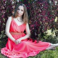 Цветение яблонь :: Алексей Корнеев