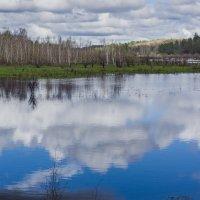 Речка Бузулька :: Виктор Фельдшеров