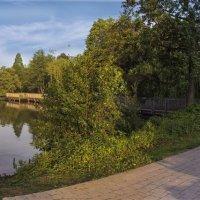 На озере :: Nikolai Martens