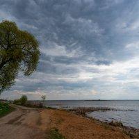 Неро озеро. :: Владимир Питерский