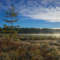 Ранним утром на оз.Свято. :: Igor Andreev
