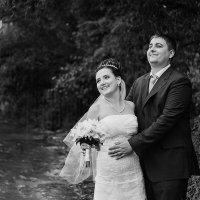 Свадебная  фото прогулка  у  воды :: Тамара Нижельская
