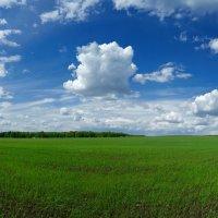 Чаще смотри на небо, а не под ноги - и будут твои мысли ясные и легкие! (Серафим Саровский). :: Андрей Заломленков