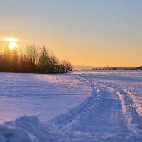 Морозное утро :: Владимир