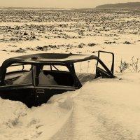 в полях под снегом и дождем... :: Елена Минина