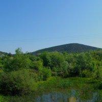 Река Сухая :: Александр Рыжов