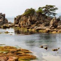 Прибрежный Кымгансан (Кумган) :: slavado