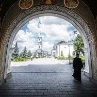 Genre photography :: Марианна Привроцкая