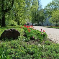 Экскурсия в Ярославль :: Gen Vel