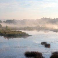 Туман над рекой Тезой :: Сергей Пиголкин