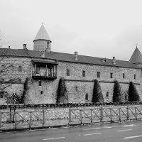 Женский монастырь :: Николай Танаев
