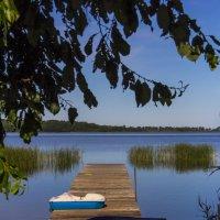 Где-то на Онежском озере :: Надежда Чернышева