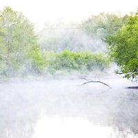 Туман над Кондурчой :: Валерий