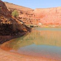 Исчезающее озеро. :: Гала