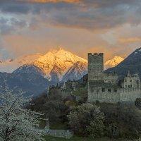 На закате в Альпах. :: Светлана Риццо